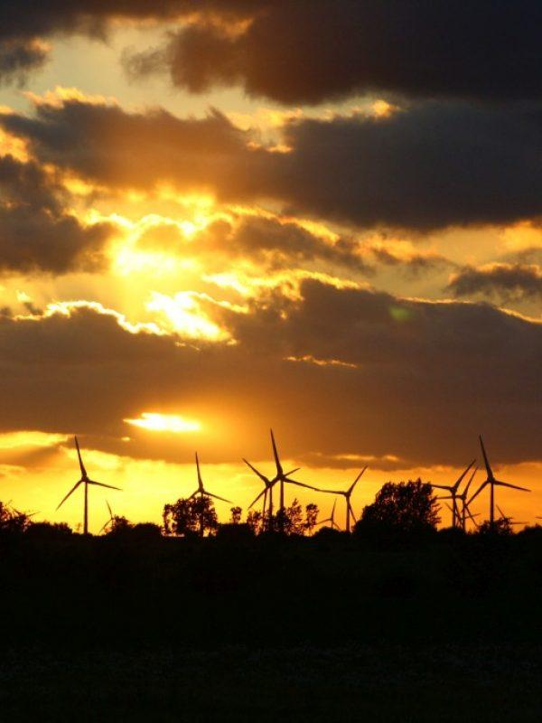 Fotografie Senski Windräder Sunset